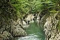 Каньон Чертовы ворота на реке Хоста в Тисо-Самшитовой роще.jpg