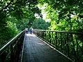 Міст пішохідний!.JPG