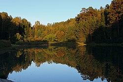 Озеро в Ботаническом саду.jpg