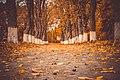 Осінній Седнівський парк.jpg