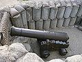 Пушка Льва Толстого - panoramio.jpg