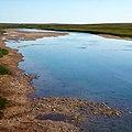 Река Лонготьеган. Приуральский район, Ямало-Ненецкий округ, Россия - panoramio.jpg