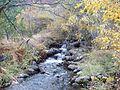 Река Струма край Боснек.jpg