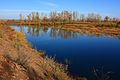 Река Урал вниз по течению - panoramio (3).jpg