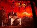 Руины церкви Николая Чудотворца на Николо-Оларевском погосте.jpg