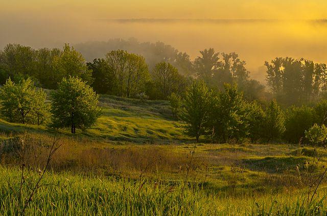 Гадяцький регіональний ландшафтний парк, © Сергій 773, CC-BY-SA 4.0