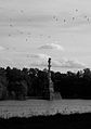 Чесменская колонна. Птицы.jpg