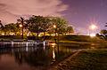 גן אדית וולפסון.jpg