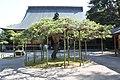 中尊寺(本堂) - panoramio.jpg