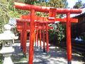 加佐登神社 - 稲荷神社 - 赤鳥居.JPG