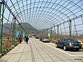 北京平谷丛海逸园采摘园 - panoramio.jpg