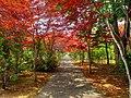 平岡樹芸センター(Hiraoka arboriculture center) - panoramio - t-konno.jpg