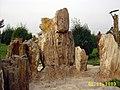 木化石 - panoramio.jpg