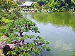清澄庭園 2013.5.18 - panoramio (2)