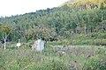 湯野温泉、坊ちゃん像、夜市川 - panoramio.jpg