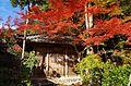 神護寺地蔵院 京都市右京区 Jizo-in 2013.11.21 - panoramio.jpg