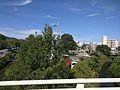 芋川(大阪府)藤原橋付近.jpg