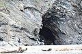 觀音海岸野生動物重要棲息環境2017海蝕洞b.jpg