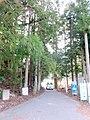谷汲山へ向かう東海自然歩道 - panoramio.jpg