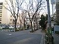 金王八幡神社参道 - panoramio.jpg
