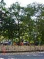 01.08.2011 Златни Пясъци - panoramio (17).jpg