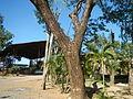 06108jfBarangay Tuyo Rosario Seminary Hospice Balanga City Bataanfvf 14.JPG
