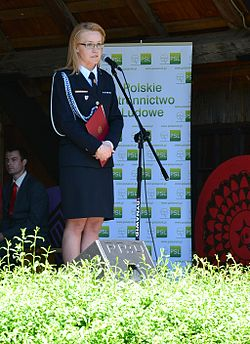 062 Pflingsttage 2013 in Sanok.JPG
