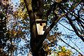 131013 Chuo Park Obihiro Hokkaido Japan03n.jpg