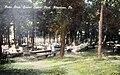 1930 - Central Park Picnic Grove.jpg
