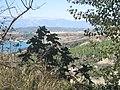 1 - panoramio (7).jpg