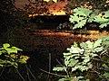 2007 11 02 - Russett Pond 25.JPG
