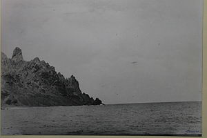 The Trindade Island's UFO - A photograph of the supposed U.F.O. taken by Almiro Baraúna. The object is the small gray dot just to the right of the image center.