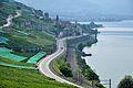 2012-08-12 10-06-54 Switzerland Canton de Vaud Rivaz.JPG