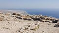 2012 - Sanctuary of Apollo Karneios - Santorini - Greece - 03.jpg