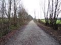 2013-01-12 Ligne de Laval à Pouancé 2.JPG