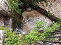 20130606 Mostar 056.jpg