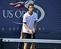 2013 US Open (Tennis) - Albert Ramos (9657576201).jpg