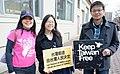 2014旅居美國波士頓臺灣人支持太陽花學運-臺灣前途由臺灣人民決定 Taiwanese Americans in Boston, MA Support the Sunflower Movement in Taiwan.jpg