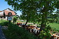 2014-05-18-Yverdon (Foto Dietrich Michael Weidmann) 121.JPG