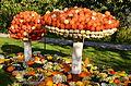 2014 Kürbisfestival - Jucker Farm (Juckerhof) 2014-10-31 14-56-08.JPG