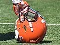 2015 Cleveland Browns Training Camp (19623986904).jpg