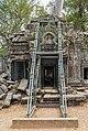 2016 Angkor, Ta Prohm (09).jpg