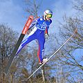20170205 Ski Jumping World Cup Hinzenbach 7602.jpg
