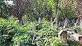 20171004 140228 Old Jewish Cemetery in Bacău.jpg