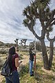 2017 Student Summit on Climate Change - Joshua tree Monitoring Project - Students measure the height of a Joshua tree (33110642850).jpg