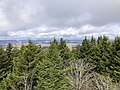 2019-10-27 11 56 40 View north-northwest across a Red Spruce forest from the observation tower on Spruce Knob in Pendleton County, West Virginia.jpg