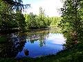 2163. Sosnovka Park. Sobach'ye lake.jpg