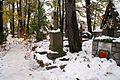"""6902vik Zakopane, cmentarz """"Na Pęksowym Brzyzku"""". Foto Barbara Maliszewska.jpg"""