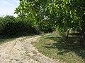 935 02 Brhlovce, Slovakia - panoramio (54).jpg