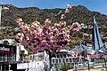 AD500 Andorra la Vella, Andorra - panoramio (2).jpg